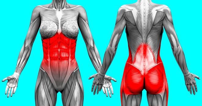 Kế hoạch tập thể dục 3 ngày để loại bỏ chất béo bụng và chuyển đổi cơ thể của bạn - Ảnh 1.