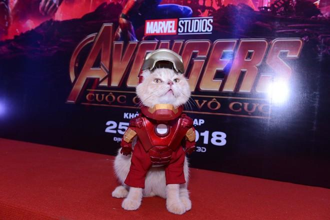 Cả dàn sao Việt đều bị lu mờ trước nhân vật đặc biệt này trong họp báo Avengers - Ảnh 3.