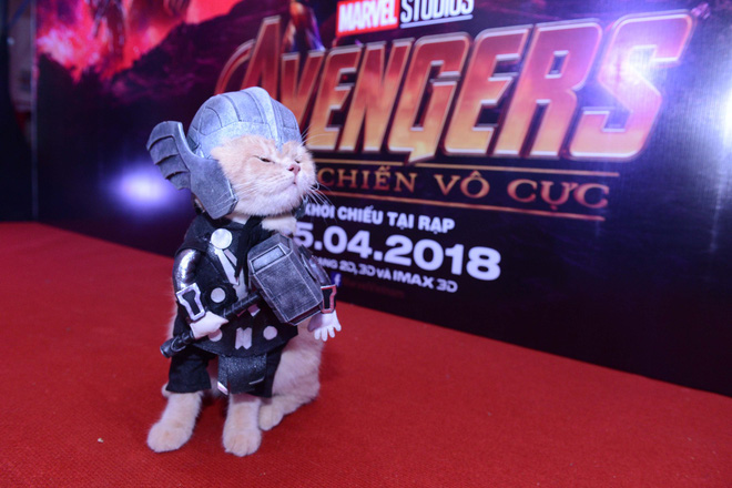 Cả dàn sao Việt đều bị lu mờ trước nhân vật đặc biệt này trong họp báo Avengers - Ảnh 8.