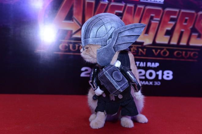 Cả dàn sao Việt đều bị lu mờ trước nhân vật đặc biệt này trong họp báo Avengers - Ảnh 9.