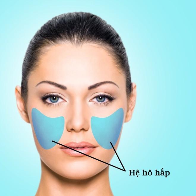 Nhìn bản đồ mụn trứng cá trên mặt để biết bộ phận nào trong cơ thể bạn đang gặp rắc rối - Ảnh 5.