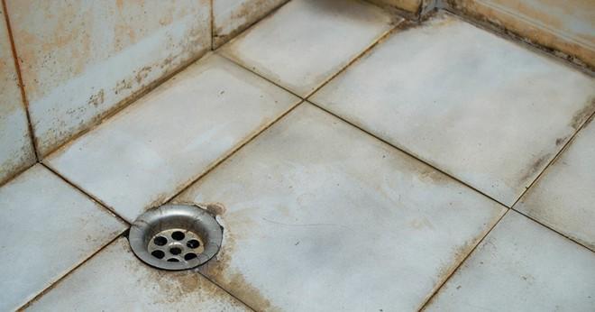 Gạch ốp nhà tắm ố vàng, đen kịt đến thế nào cũng sẽ trắng sạch ngay lập tức chỉ với một chai xịt này - Ảnh 1.