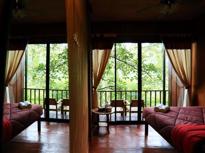 6 trải nghiệm du lịch chất lừ nhất định nên thử khi đến Chiang Mai - Ảnh 2.