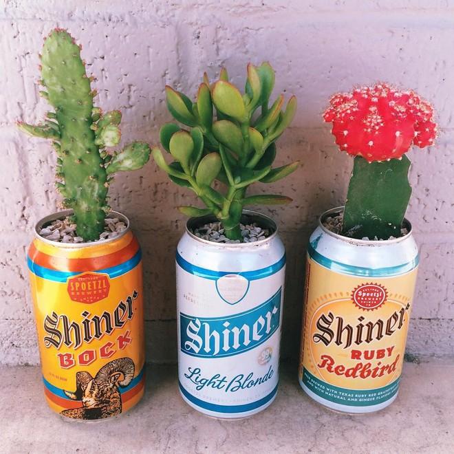 Sáng tạo chậu trồng cây theo những cách này, bạn sẽ mang cả sắc màu trang trí lạ cho căn nhà - Ảnh 1.