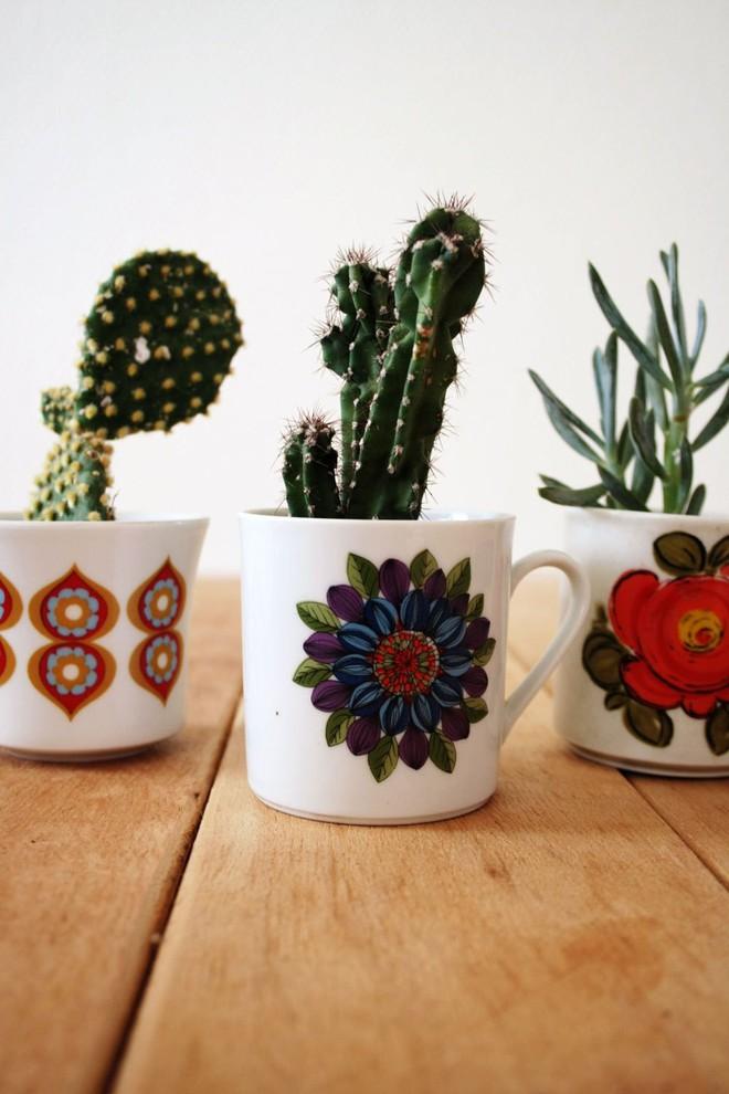 Sáng tạo chậu trồng cây theo những cách này, bạn sẽ mang cả sắc màu trang trí lạ cho căn nhà - Ảnh 11.