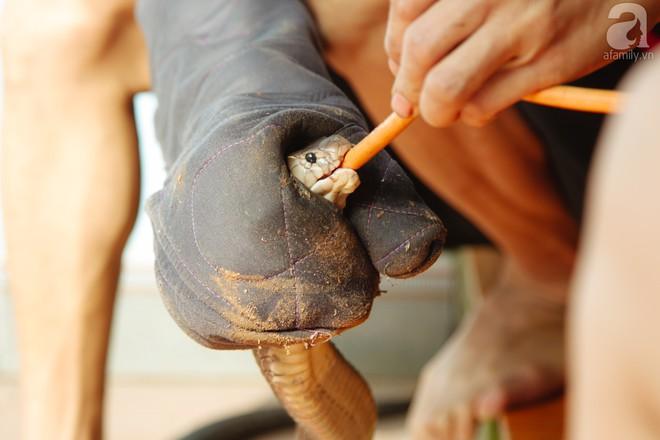 Nông dân kiếm hàng tỷ đồng mỗi năm nhờ nghề lạ - Ảnh 8.