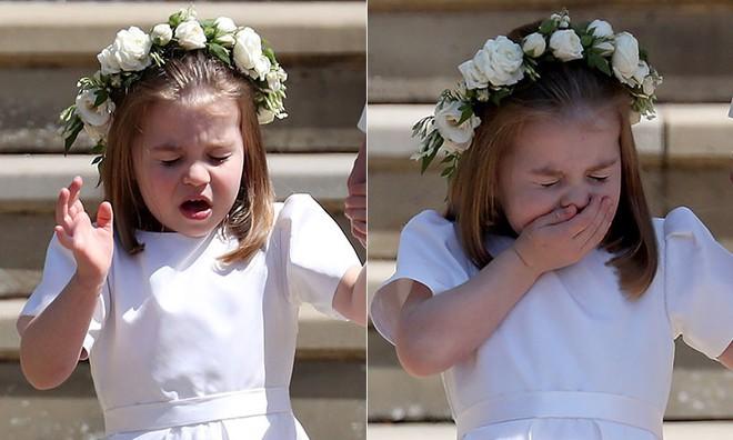 Khoảnh khắc đáng yêu của công chúa Charlotte trong đám cưới hoàng gia lần đầu được công bố khiến dân mạng phát sốt - Ảnh 1.