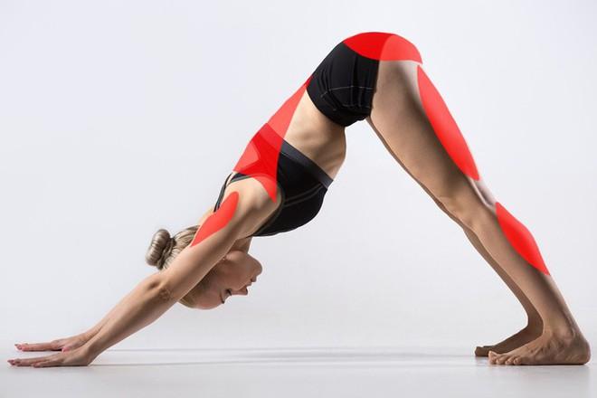 15 tư thế yoga có thể làm thay đổi cơ thể dù bạn là người mới bắt đầu tập hay đã là chuyên gia - Ảnh 2.