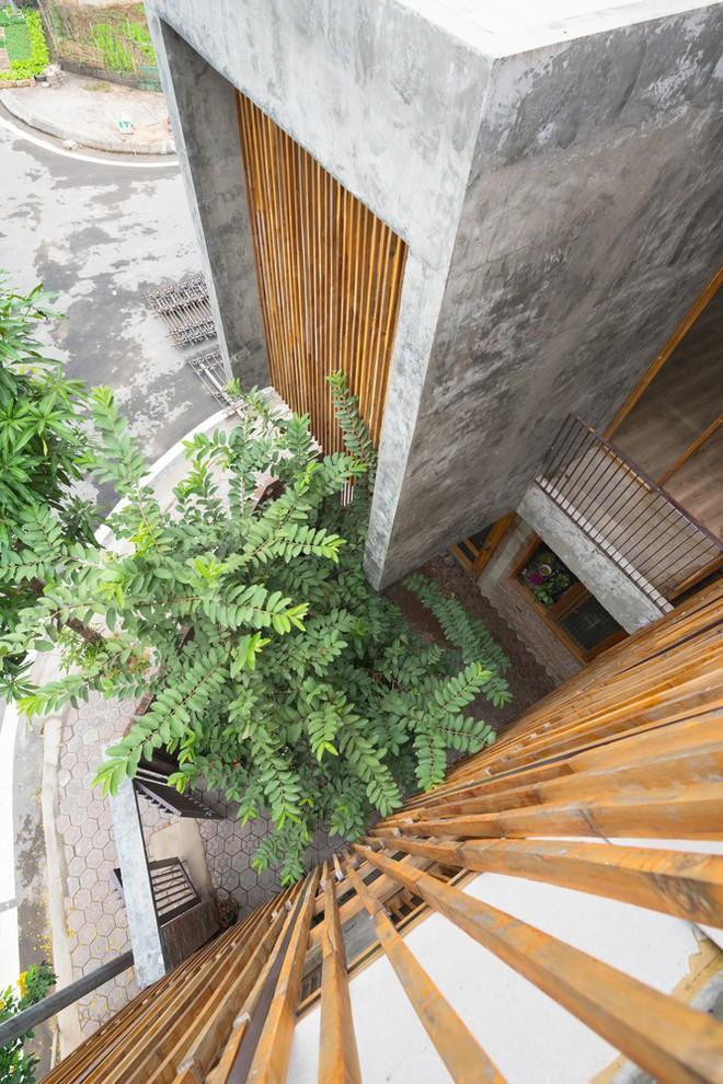 Ngôi nhà mặt tiền toàn gạch mộc và lam gỗ ở Hải Dương nổi bật trên báo Tây - Ảnh 16.