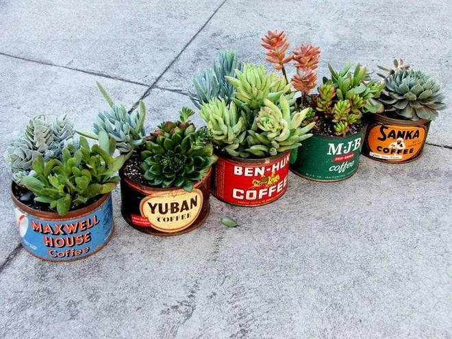 Sáng tạo chậu trồng cây theo những cách này, bạn sẽ mang cả sắc màu trang trí lạ cho căn nhà - Ảnh 2.