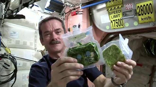13 ngày áp dụng chế độ ăn kiêng Phi hành gia, bạn có thể giảm tới 9kg và loại bỏ các vấn đề về dạ dày - Ảnh 2.