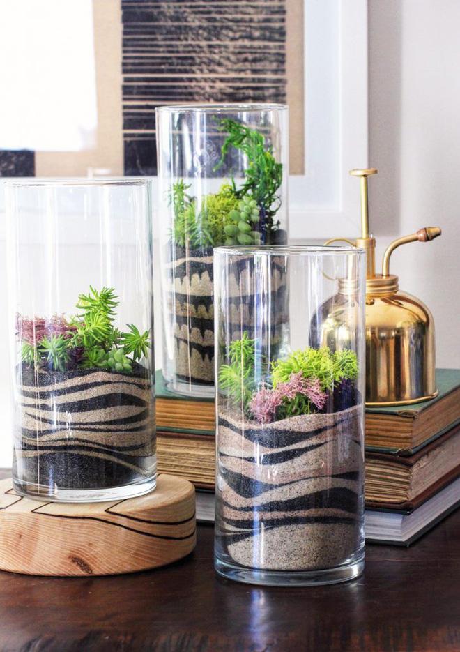 Trồng cây trong nhà bằng cách sử dụng những dạng bình cát màu vô cùng độc đáo - Ảnh 2.