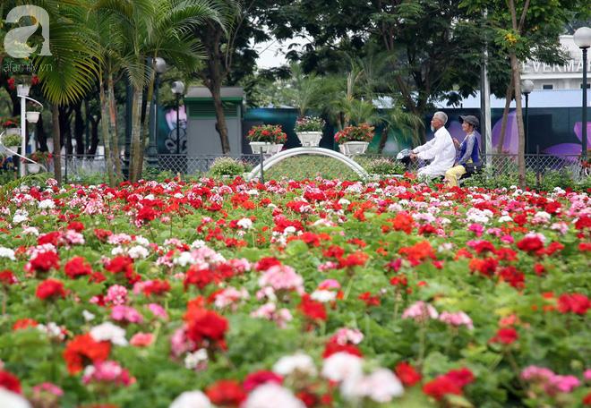 Chùm ảnh phố đi bộ Trịnh Công Sơn gấp rút hoàn thiện trước giờ G - Ảnh 3.