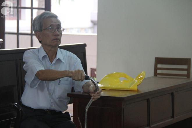 Đang xét xử giám đốc thẩm vụ Nguyễn Khắc Thủy dâm ô trẻ em ở Vũng Tàu được hưởng 18 tháng tù treo gây bức xúc dư luận - Ảnh 2.