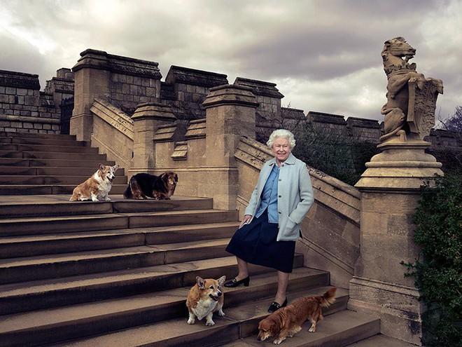 Chả trách Công chúa Charlotte lại có thần thái xuất chúng đến như vậy, hóa ra cô bé chính là bản sao hoàn hảo của Nữ hoàng - Ảnh 8.