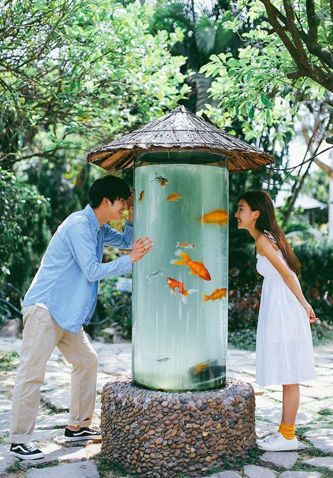 Bộ ảnh cưới đẹp mê đang khuấy đảo MXH: Thần thái quá đỗi tự nhiên, tình và mãn nguyện - Ảnh 10.