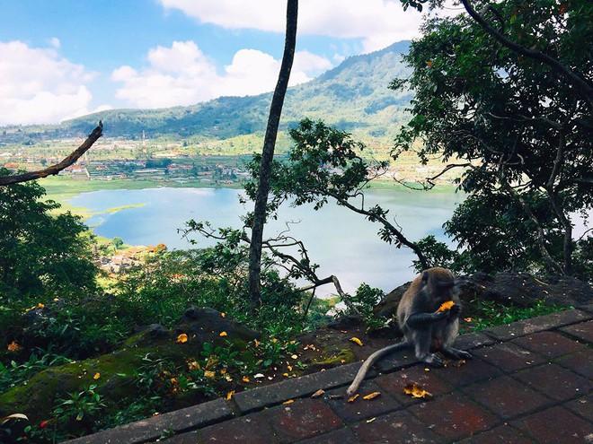 Trải nghiệm du lịch Bali một mình, 10 ngày chỉ hết 15 triệu của nàng 9X - Ảnh 26.