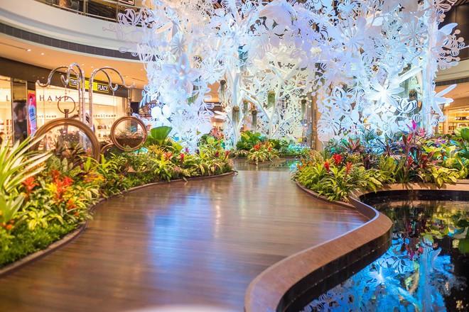 Changi có nhiều tiện nghi mua sắm, giải trí thế này, bảo sao luôn nằm trong top sân bay được ưa thích nhất thế giới - Ảnh 16.