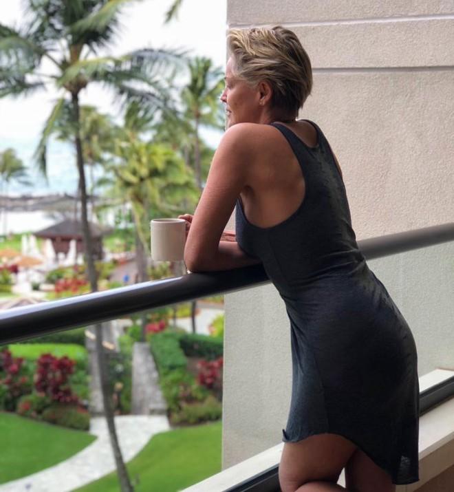 Người đẹp Bản Năng Gốc Sharon Stone và bí quyết giữ thân hình nóng bỏng nuột nà bất chấp đã bước sang tuổi 60 - Ảnh 4.