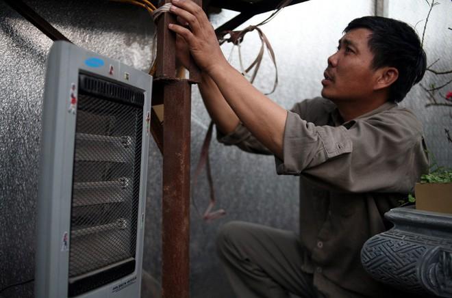 Hà Nội: Người dân lắp điều hòa, bật quạt sưởi, bọc nilon chống rét cho đào Tết - Ảnh 1.
