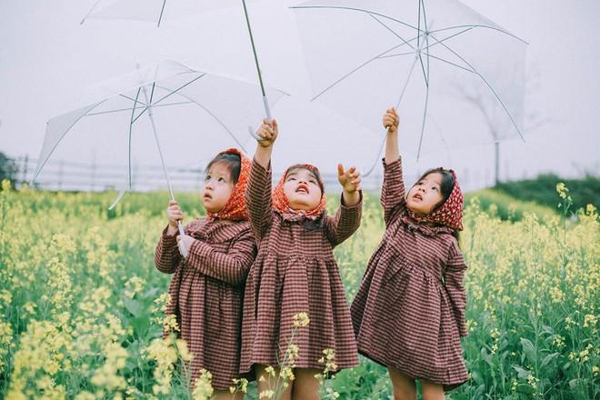 Bộ ba bạn thân Mầm - Mũm - Mon xuất hiện siêu yêu trong bộ ảnh chụp trên cánh đồng hoa cải - Ảnh 1.