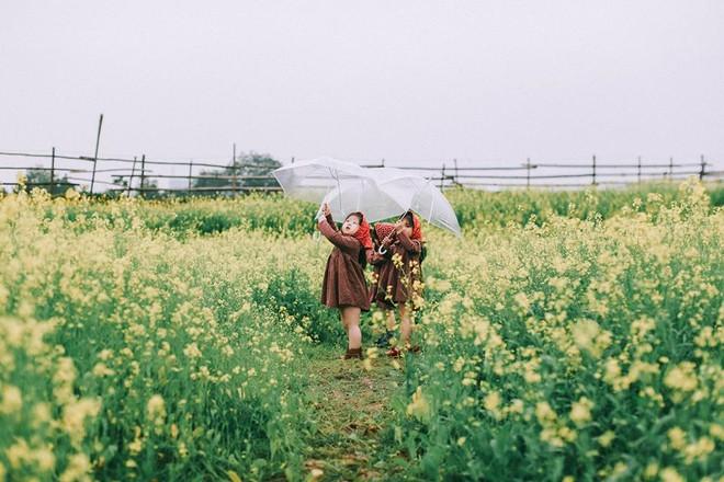 Bộ ba bạn thân Mầm - Mũm - Mon xuất hiện siêu yêu trong bộ ảnh chụp trên cánh đồng hoa cải - Ảnh 3.