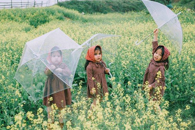 Bộ ba bạn thân Mầm - Mũm - Mon xuất hiện siêu yêu trong bộ ảnh chụp trên cánh đồng hoa cải - Ảnh 5.