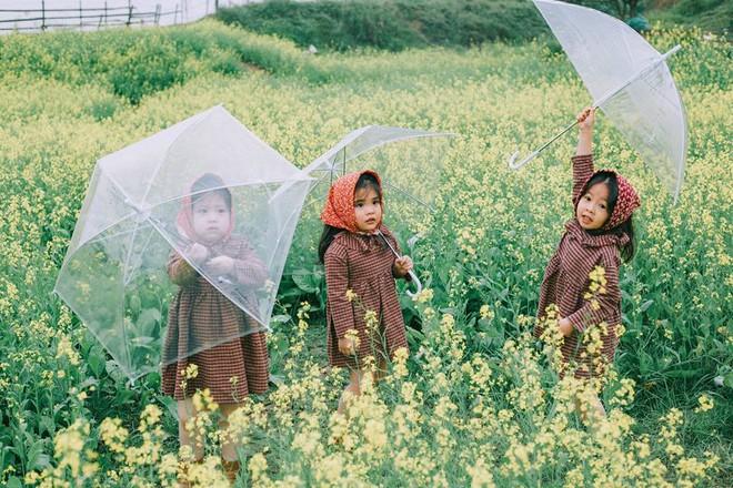 Bộ ba bạn thân Mầm - Mũm - Mon xuất hiện siêu yêu trong bộ ảnh chụp trên cánh đồng hoa cải - Ảnh 8.