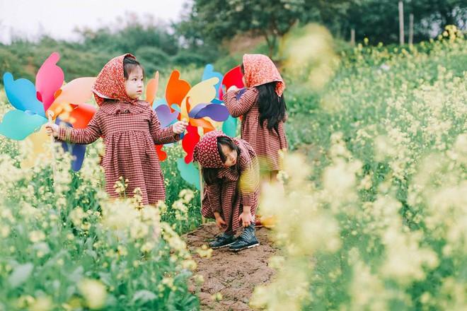 Bộ ba bạn thân Mầm - Mũm - Mon xuất hiện siêu yêu trong bộ ảnh chụp trên cánh đồng hoa cải - Ảnh 9.
