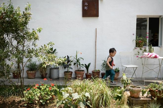 Vợ chồng nhiếp ảnh gia bỏ thành phố về xây ngôi nhà ngập tràn cây xanh, tạo cuộc sống mơ ước cho con trai - Ảnh 9.