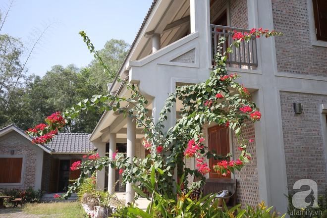 Ngôi nhà vườn hoài cổ với mái nhuốm màu thời gian bình yên giữa núi đồi Bắc Ninh - Ảnh 10.