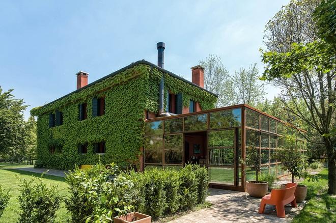 Ngôi nhà 450m² ở vùng quê được bao quanh bởi cây xanh tươi tốt khiến ai nhìn thấy cũng thích - Ảnh 6.