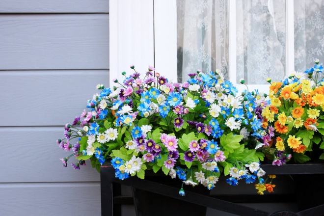 Ban công tràn ngập sắc hè nhờ trang trí với hoa tươi siêu ấn tượng - Ảnh 5.