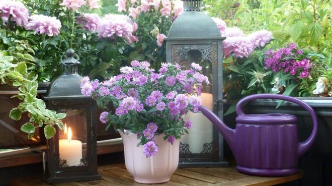 Ban công tràn ngập sắc hè nhờ trang trí với hoa tươi siêu ấn tượng - Ảnh 13.