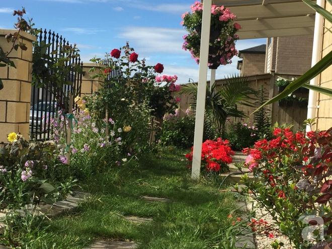 Chỉ mất 2 năm, bà mẹ trẻ đã phủ kín khu vườn rộng tới 200m² với hàng trăm loài hoa rực rỡ muôn màu - Ảnh 4.