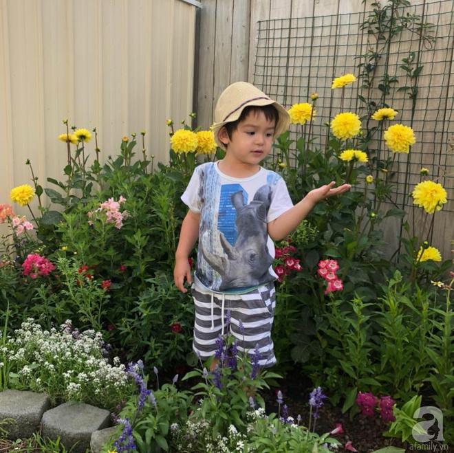 Chỉ mất 2 năm, bà mẹ trẻ đã phủ kín khu vườn rộng tới 200m² với hàng trăm loài hoa rực rỡ muôn màu - Ảnh 5.