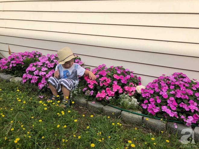 Chỉ mất 2 năm, bà mẹ trẻ đã phủ kín khu vườn rộng tới 200m² với hàng trăm loài hoa rực rỡ muôn màu - Ảnh 15.
