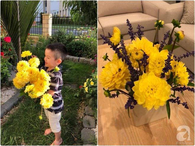 Chỉ mất 2 năm, bà mẹ trẻ đã phủ kín khu vườn rộng tới 200m² với hàng trăm loài hoa rực rỡ muôn màu - Ảnh 18.