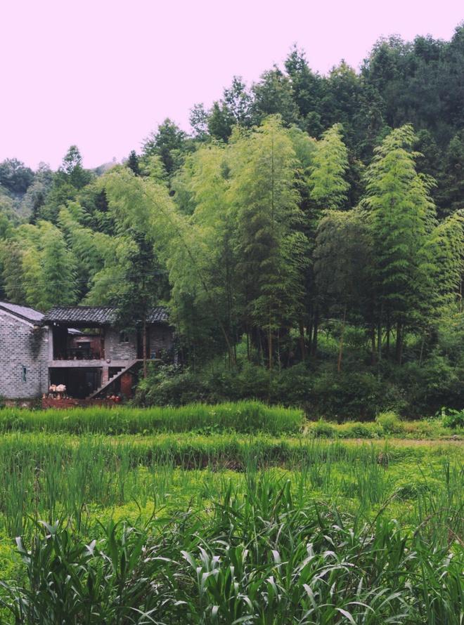 Đôi vợ chồng 8x bỏ phố về núi, cải tạo ngôi nhà cũ thành không gian ấm áp, bình yên bên rặng tre xanh - Ảnh 3.