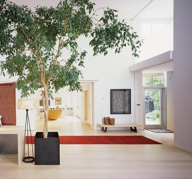 Thiết kế lối vào nhà hiện đại nói thay lời chào mừng với mỗi vị khách đến nhà - Ảnh 1.