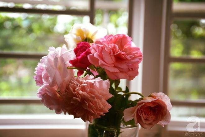 Ngắm ban công chỉ vỏn vẹn 2,2m² nhưng có tới hơn 20 chậu hồng thơm ngát ở Sài Gòn - Ảnh 9.