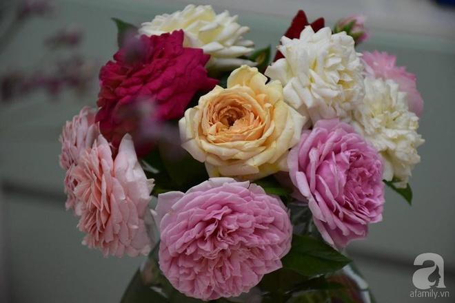 Ngắm ban công chỉ vỏn vẹn 2,2m² nhưng có tới hơn 20 chậu hồng thơm ngát ở Sài Gòn - Ảnh 14.