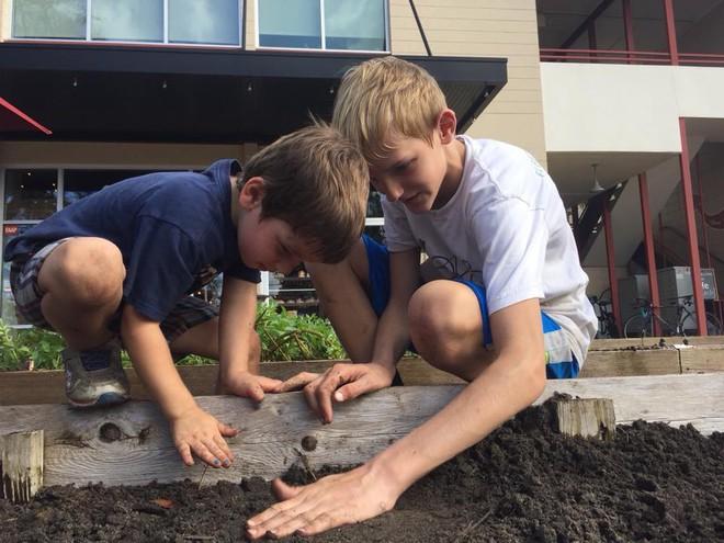 Khu vườn tạo cảm hứng cho hàng nghìn trẻ em yêu thích trồng trọt ở Mỹ - Ảnh 17.
