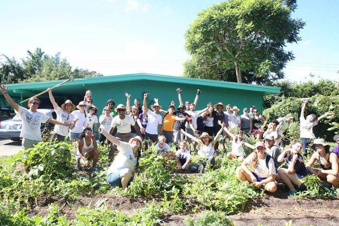 Khu vườn tạo cảm hứng cho hàng nghìn trẻ em yêu thích trồng trọt ở Mỹ - Ảnh 19.