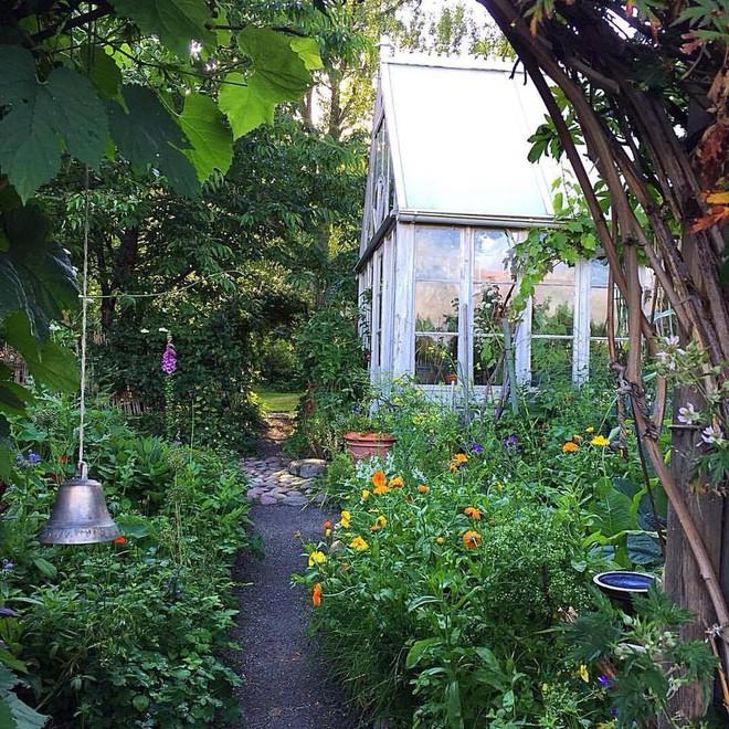 Khu vườn bạt ngàn rau quả sạch của người phụ nữ bắt đầu làm vườn từ năm 10 tuổi - Ảnh 5.