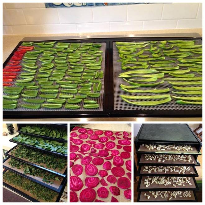Khu vườn đầy rau xanh và trái ngọt của người phụ nữ bỏ việc giáo viên về làm vườn - Ảnh 19.