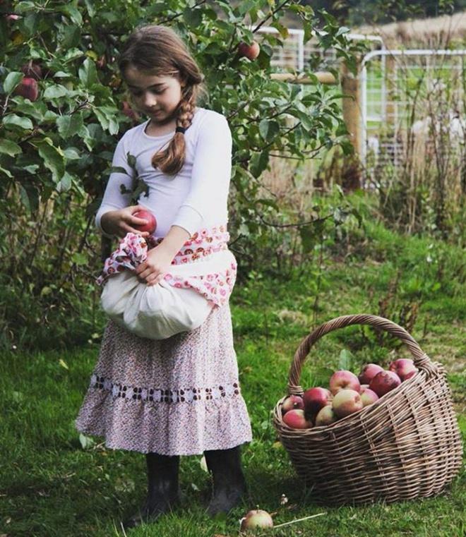 Cuộc sống yên bình của một gia đình nhỏ bên khu vườn cây sai trĩu quả như trong thế giới cổ tích - Ảnh 10.