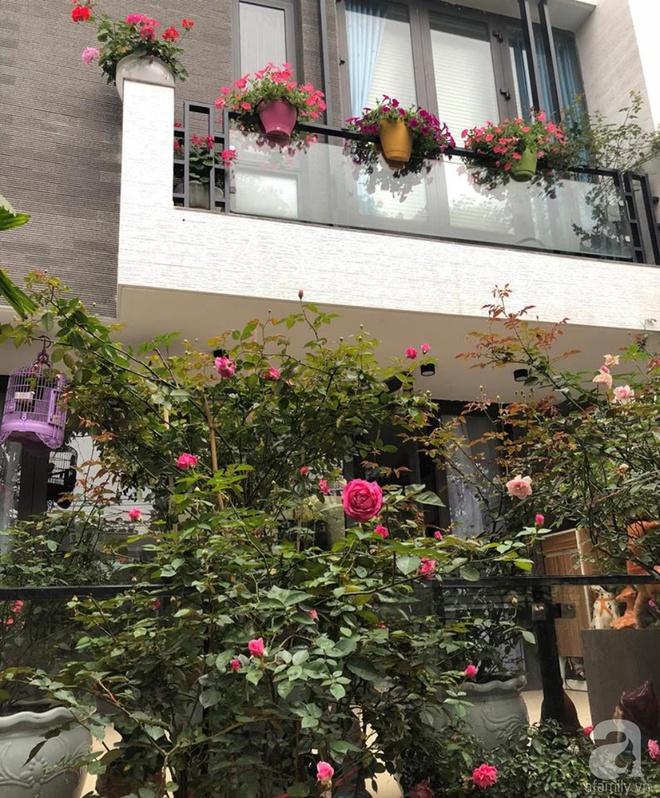 Khoảng sân rộn ràng hoa lá cùng tiếng chim ca vô cùng yên bình của bà mẹ 3 con ở Nghi Tàm, Hà Nội - Ảnh 7.