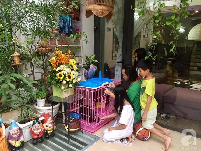 Khoảng sân rộn ràng hoa lá cùng tiếng chim ca vô cùng yên bình của bà mẹ 3 con ở Nghi Tàm, Hà Nội - Ảnh 22.