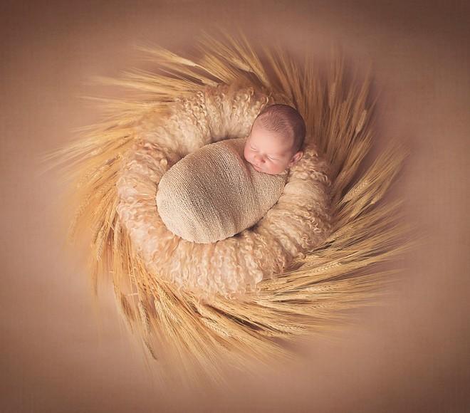 Ngất ngây với chùm ảnh những em bé sơ sinh cuộn tròn say ngủ - Ảnh 1.